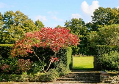 Traditional Garden
